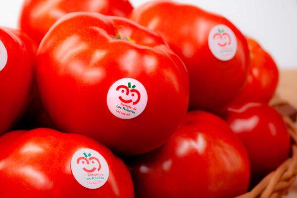 fotografia-publicitaria-tomate-de-los-palacios-y-villafranca-3