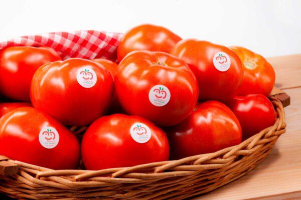 fotografia-publicitaria-tomate-de-los-palacios-y-villafranca-4