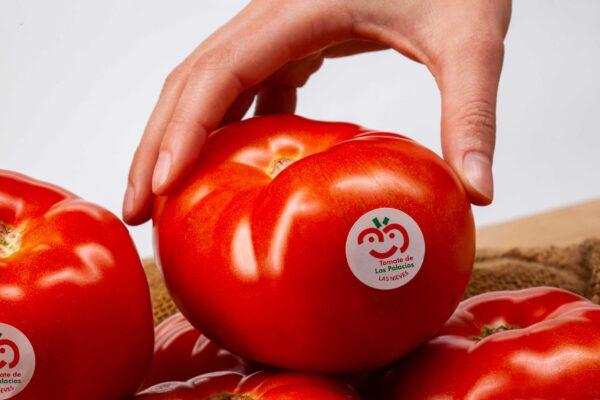 fotografia-publicitaria-tomate-de-los-palacios-y-villafranca-5